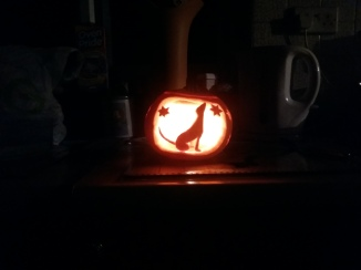 Said pumpkin (and best carving I've ever done ever)