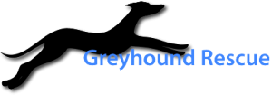 www.greyhoundrescue.org.uk